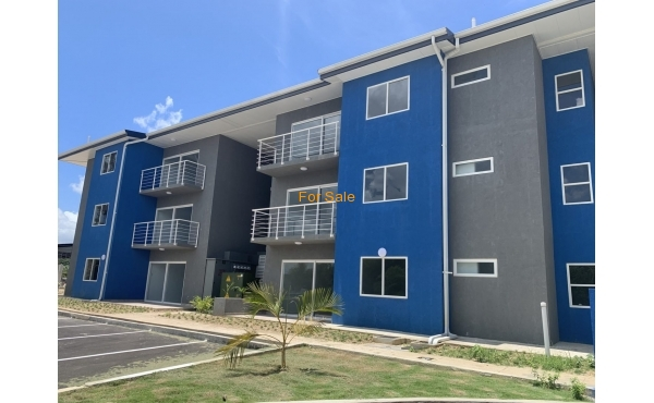 East Lake,  Development, Arima